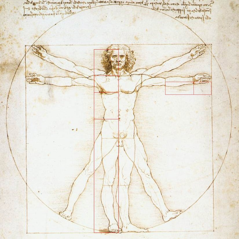 Vitruvian-Man-Da-Vinci